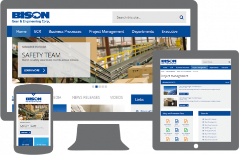 Bison Gear  responsive website design portfolio image